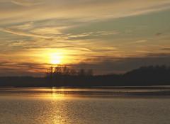DSC06401 (janjanny) Tags: 2012 delftsehout fromaperture landscapes places seasons wildlifeandlandscapes winter