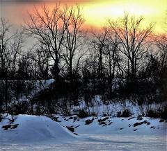 Sunset on the iced river. (rosedenovembre) Tags: trees sunset icy snow coucher soleil arbres rivière gelée couleurs jaune orangé orange yellow brume nature ngc