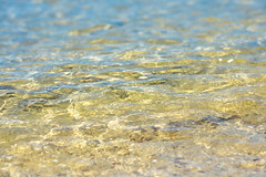Shallows (.Stephen..Brennan.) Tags: bicton da70 pentax pentaxk3 swanriver waterscape perth westernaustralia australia au 70mm