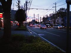 夕景 (frenchvalve) Tags: 夕方 東八道路 中判 film filmphotography 120 120rollfilm 645 mediumformat analog