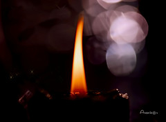 Candle light and Bokeh_MM