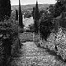 Down to Vaison