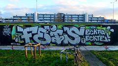Capelsebrug - R.I.P. Feis (oerendhard1) Tags: graffiti streetart urban art rotterdam oerendhard rip feis rapper eckte capelsebrug baipe