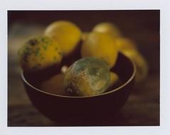 La terre est bleue comme un citron (ccedric.com) Tags: polaroid fruit citron ccédric graflex