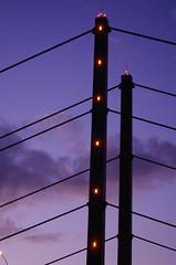 03 Dusseldorf octobre 2018 - le Rhin (paspog) Tags: dusseldorf düsseldorf allemagne deutschland germany octobre oktober october 2018 pont bridge rhin rhine rhein fleuve river fluss