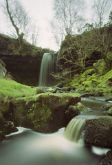 First pinhole snaps for a while. (wheehamx) Tags: pinhole 6x9 fairlie homemade camera