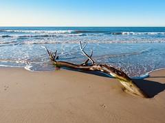 Plage de l'Espiguette, Gard (laudato si) Tags: gard grauduroi espiguette sable sea mer plage beach