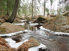 Myllypuro, Tampere (PeepeT) Tags: myllypuro tampere ikuri puro stream creek kevät spring maaliskuu march