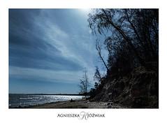 Orłowo. (smoothna) Tags: gdynia orłowo klif winter nature fujix30 zimanadbaltykiem balticsea sunlight