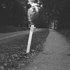 A bent-over road guide post (Matthew Paul Argall) Tags: belomoshkolnik fixedfocus 120film 120 mediumformat ilforddelta100 100isofilm squareformat squarephoto blackandwhite blackandwhitefilm