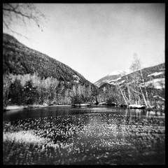 (julien_o_O) Tags: holga film bw nb savoie analogue winter mountain