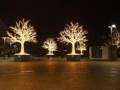 Burning Trees (mkorsakov) Tags: hamm hbf bahnhof mainstation busbahnhof baum tree beleuchtung light xmaslights weihnachtsbeleuchtung wtf