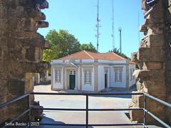 Castelo de Castelo Branco - Escola Conde Ferreira vista da Torre do Palácio dos Alcaides (Sofia Barão) Tags: portugal castelo branco beira baixa castle