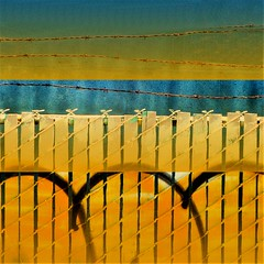 protection + fx (msdonnalee) Tags: fence chainlinkfence barbedwire digitalfx grafitti fx waterpixelfx hss abstract
