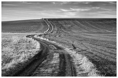 Destino (una cierta mirada) Tags: landscape sky nature road path agriculture outdoors senda sendero camino bnw blackandwhite panasonic dmcgx8 lumix g vario 1260f3556