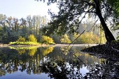 Langueur d'automne (Evim@ge) Tags: automne blue bleu outside extérieur grésivaudan lac lake brume misty fog foggy lumière réflexion reflet feuilles leafe contrejour