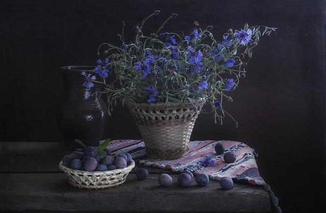 Обои цветы, темный фон, голубые, кувшин, натюрморт, синие, васильки, слива картинки на рабочий стол, раздел цветы - скачать