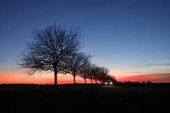 sunset drive (chtimageur) Tags: sunset france car colours evening landscape voiture coucher de soleil soirée canon 6d mark ii berry vierzon