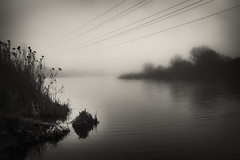 cable over lake in the fog (Pomo photos) Tags: cable wire wires lake fog mist misty surreal noir sepia brown water landscape bulrush tree trees lowlight night evening reflection waves wave grain monochrome mono mood moody pillar bush plant blackandwhite blackwhite bw winter fisherman fishing fujifilm x100s fujifilmx100s