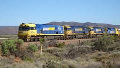 0405 Güterzug vor - freight trains north of; Port Augusta (roving_spirits) Tags: australia australien australie southaustralia
