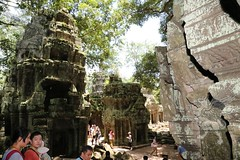 Angkor_Ta Prohm_2014_29