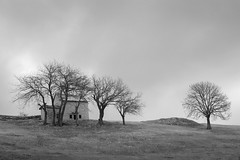 Cloudy day in Lessinia (Roberto Spagnoli) Tags: lessinia mountain montagna biancoenero blackandwhite bw trees house pasture alm beauty nature paesaggio landscape