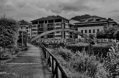temp (197) Cangas de Onís. (blanferblanc) Tags: puente madera edificios ciudad camino