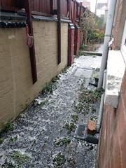 2019_03_170002 (Gwydion M. Williams) Tags: coventry britain greatbritain uk england warwickshire westmidlands hail