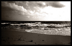 ancient sand (Claudio Taras) Tags: claudio contrasto controluce canon canona1 film filmisnotdead hp5 biancoenero bw bokeh shadow sardegna santeodoro 24x36 rodinal 50mmfd 1 8 onde sabbia analogica mare taras