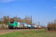 481823-Perrigny-)Sibelin (AziroxY) Tags: trains trainspotting train photo photographie plm photosncf prima bb27000 citerne bleue soleil