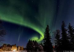 Z19_0075 LT (Zoran Babich) Tags: finland suomi lapland lappi auroraborealis northernlights landcape winter lainio