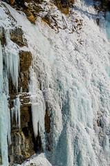 Ice Hanging on Cliff (Bracus Triticum) Tags: ice hanging cliff アルバータ州 alberta canada カナダ 12月 december winter 2018 平成30年 じゅうにがつ 十二月 jūnigatsu 師走 shiwasu priestsrun