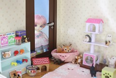 The Fallen Star Finds Hope #3 (Arthoniel) Tags: feign reign shire pets animals cat dog liccachan latidoll suji ns normalskin basic faceup haru tan owl ooak roombox gakman creations artdoll dollhouse collection tiny miniature rement bid balljointeddoll latiyellow house figure vet