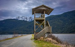 Look out point - Pitt Lake Dike - Grant Narrows Regional Park (Christie : Colour & Light Collection) Tags: lookout viewpoint pittlakedike wildlife nature pittlake pittriver grantnarrowsregionalpark lake dike bccoastalmountains britishcolumbia nikon dslr nikond5600 marshland marsh tidallake winter mountains snowpeak structure birdwatcher birdwatching kike pittlakeloop waterfoul outdoors scenic wetlands sky clouds ngc