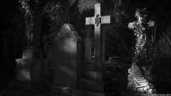 Arnos Vale Cemetery in January(Explored 24/01/2019) (zolaczakl) Tags: bristol bristolinmonochrome mono monochrome blackandwhitebristol blackandwhite bw arnosvalecemetery gravestones graveyard grave cemetery 2019 brislington january uk england photographybyjeremyfennell nikond800 nikonafsnikkor50mmf18glens