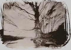 Mill Force, River Greta - 2019 (Andrew Bartram (WarboysSnapper)) Tags: 8x10 xray fujihrt rss pinhole millforce grahamvsey rodinal 150 5mins saltprint alternativeprocess rivergreta pinholephotography