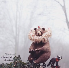 Lost ☁️ (pure_embers) Tags: pure embers laura uk pureembers photography kitty teddy circus bear tricycle woods art lindsey thomas makes raccoon zozo zolala needlefelted fog lost