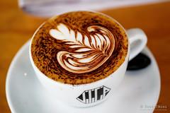 20190318-05-Cappuccino at Vilicia in Hobart (Roger T Wong) Tags: 2019 australia hobart metabones rogertwong sigma50macro sigma50mmf28exdgmacro smartadapter sonya7iii sonyalpha7iii sonyilce7m3 tasmania cappuccino coffee lunch