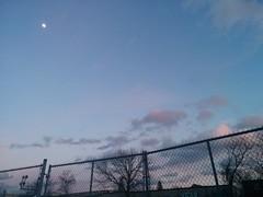 The sky last evening (2) #toronto #gearyave #davenport #evening #sky #blue #moon (randyfmcdonald) Tags: blue moon davenport sky evening gearyave toronto