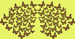 Butterflies Are Free (soniaadammurray - On & Off) Tags: art myart visualart abstractart contemporaryart experimentalart repetition rhythm shadows reflections butterflies yellow artchallenge artweekgallerygroup ~~~repetitionandrhythm~~~ life