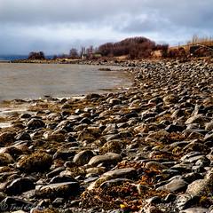 Late March 2019 (Trond Sollihaug) Tags: skatval stjørdal trondelag trøndelag trondheimsfjord sea seaside beach stones