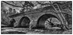 Beldon Burn bridge (K3v1n5) Tags: nikon d750 1835 1835mm 1835mmf3545g baybridge derwent