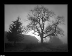 Brume sur Bolandoz (francky25) Tags: brume sur bolandoz noir et blanc franchecomté doubs hiver ambiance