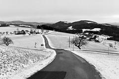 ON THE WAY TO THE NEXT STORE (LitterART) Tags: strase weg land country monochrome nikond800 fx steiermark österreich winter schnee snow