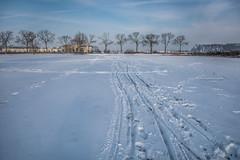 Tracks (Ingeborg Ruyken) Tags: sneeuw 500pxs january empel orning instagram winter natuurfotografie januari ochtend flickr snow