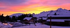 France 2019 - La Joue du Loup (Hautes Alpes) (philippebeenne) Tags: france ski neige snow mountain montagne panorama alpes lajoueduloup devoluy hautesalpes lumix tz200 panasonic leica