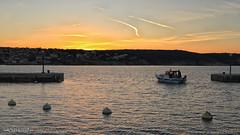 Leave the port at dusk (malioli) Tags: boat sun sunset dusk sea adriatic croatia hrvatska canon europe