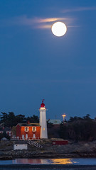 """Super Full """"Worm Moon"""" 9 minutes later Pic #2 (SpyderMarley) Tags: moonreflectiononwater portraitorientation verticalperspective handheld trees seagulls beach scenic super moon equinox blue hour dusk night worm lighthouse full after sunset evening colwood vancouver island british columbia fisgard national historic site first western canada nikon d7200 nikkor 200500mm lens telephoto water rock rising esquimalt harbour built 1860 beautiful lighting photogenic """"strait juan de fuca"""" """"pacific coast"""""""