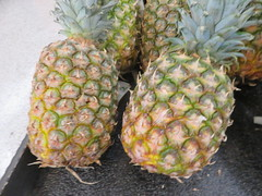 IMG_0903 (earthdog) Tags: 2019 canon canonpowershotsx730hs powershot sx730hs needstags needstitle food edible pineapple fruit lucky shopping store market grocerystore