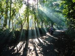 P1130061 Bali (Dave Curtis) Tags: bali sunbeams rays motorbike 2014 may panasonic rafting tz15 whitewater